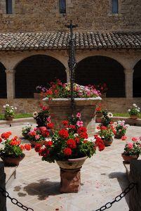 dsc_0317-fiori